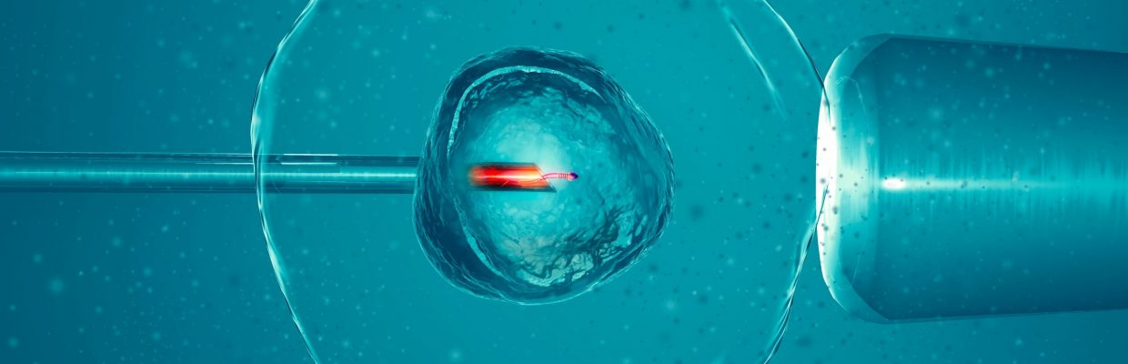3D graphic image of artificial or assisted fertilisation